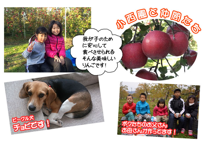 我が子のため に安心して 食べさせられる そんな美味しい りんごです!