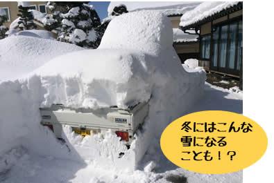 冬にはこんな 雪になる ことも!?