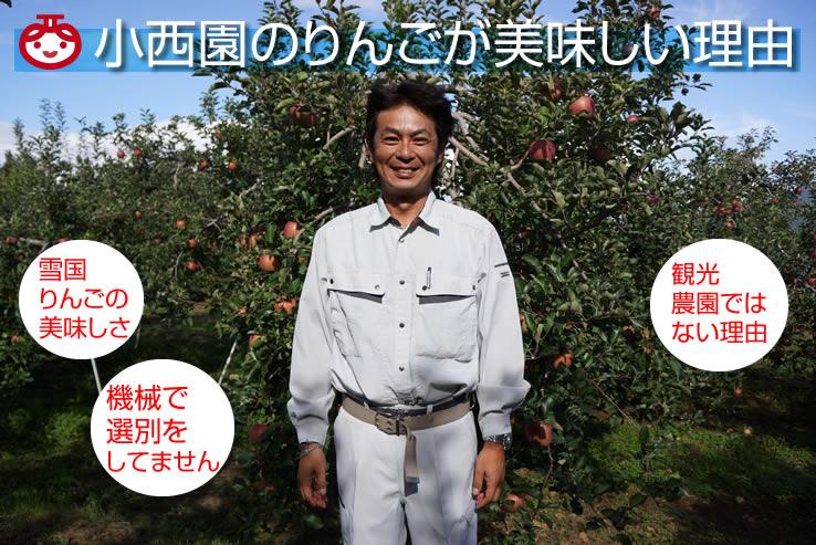 小西園のりんごが美味しい理由