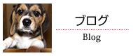 園主ブログ